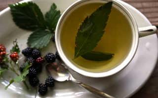 Чай из листьев ежевики польза и вред