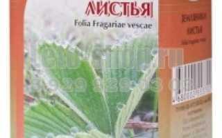Листья клубники лечебные свойства и противопоказания