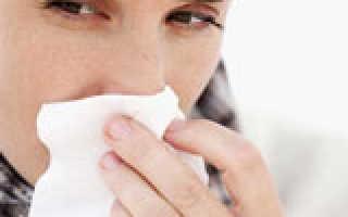 Аллергия на шерсть животных лечение