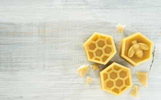 Пчелиный воск свойства и применение
