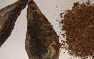 Струя бобра лечебные свойства применение при онкологии