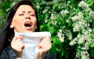 Аллергия на цветение в июне лечение