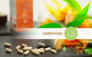Ашваганда лечебные свойства и противопоказания