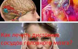 Сосуды головного мозга симптомы лечение народные средства