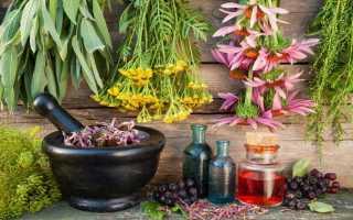 Лечение аллергии детей травами