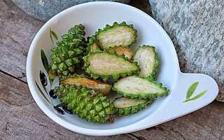 Сосновые зеленые шишки лечебные свойства и противопоказания