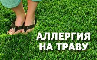 Аллергия на сорные травы лечение