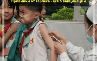Вакцина от герпеса детям