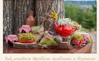 Народная медицина лечение народными средствами травами