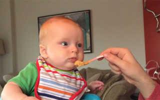 Что можно давать ребенку в 5 месяцев